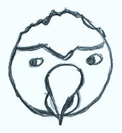 Blog19-Parrot
